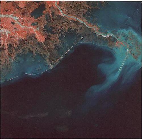 Kenampakan delta pada Citra Satelit
